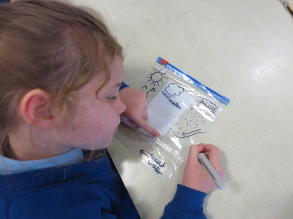 The Water Cycle St Augustine S Catholic Primary School Draw the water cycle on a ziplock bag, put some water at the bottom, then tape it to the window. the water cycle st augustine s